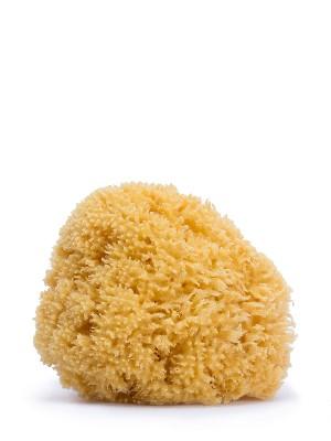 Suavinex esponja  natural grande
